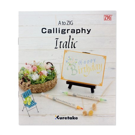 Zig Itallic Calligraphy Education Set